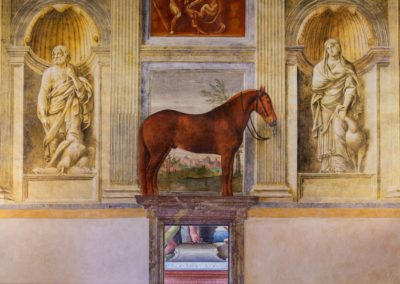 The Favorite Horse, Italy